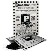 Phosphoderma 3gr