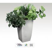 Tetra Hydrο Kit with Plants