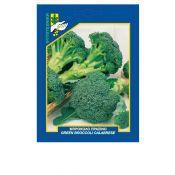 Green broccoli calabrese