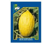 Yellow Juan Canary Melon