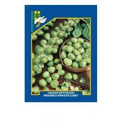 Brussels sprouts, Lunet