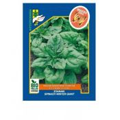 Organic Spinach, Winter Giant