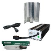Digital Pro kit 600w