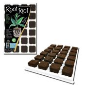 Root Riot 24 - propagation cubes tray of 24